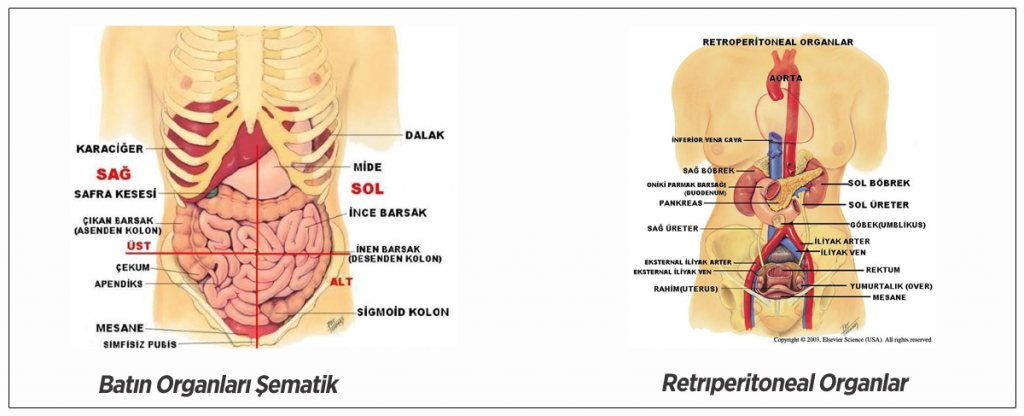 Batıl Organlar